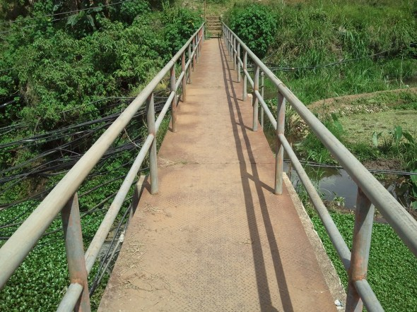 A bridge over an agricultural dam.