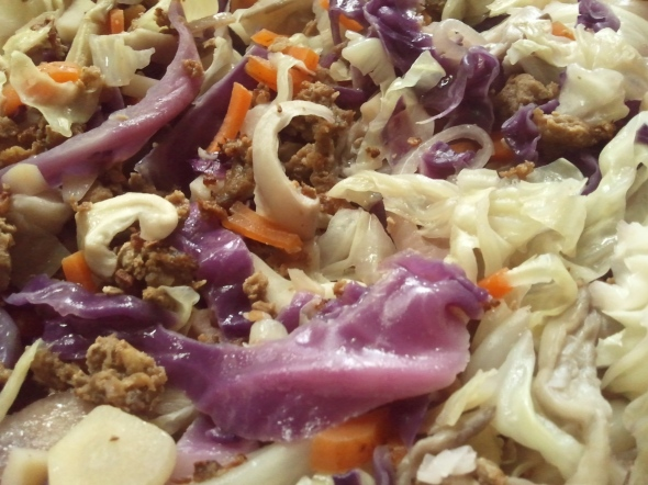 Chopsuey with mushrooms and red cabbage.