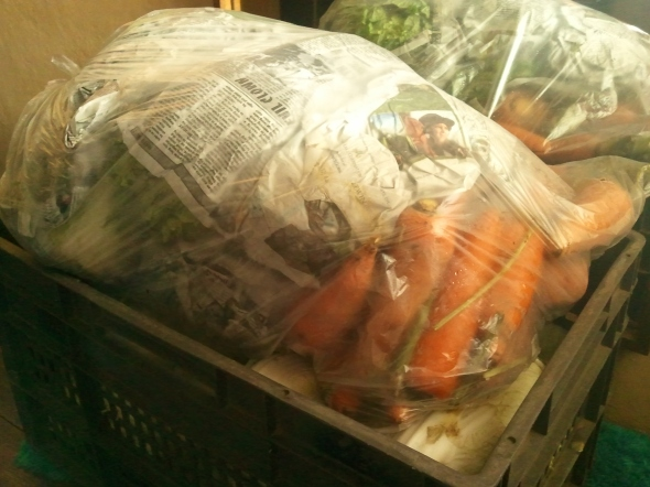 Our weekly shipment of vegetables.